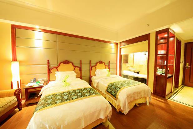 惠州龙门南昆山温泉大观园养生双床房