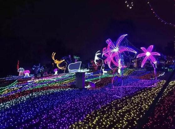 清远聚龙湾天然温泉度假村夜景