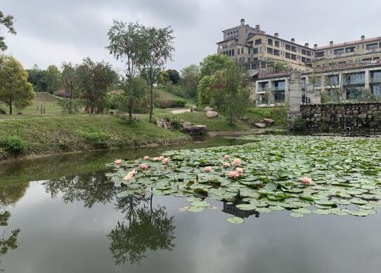 广州九龙湖国王酒店湖景